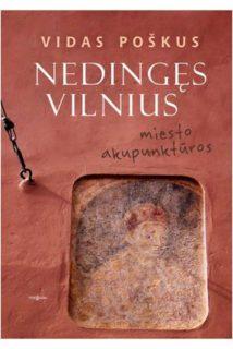 Nedingęs Vilnius : miesto akupunktūros