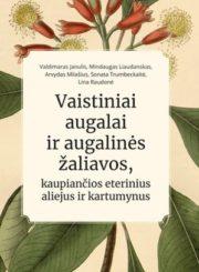 Vaistiniai augalai ir augalinės žaliavos, kaupiančios eterinius aliejus ir kartumynus