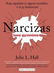 Narcizas tavo gyvenime : kaip atpažinti jo elgesio modelius ir iš jų išsilaisvinti